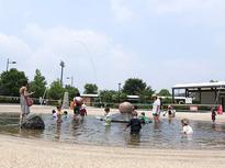 冷たい水が気持ちいい!じゃぶじゃぶ池で遊ぼう!