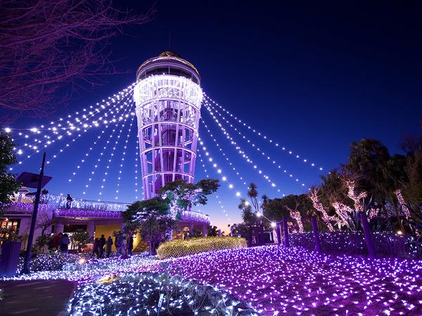 光と色の祭典を江の島で楽しもう!「湘南の宝石」の画像