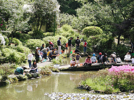 遊びどころがいっぱい、東丹沢グリーンパーク