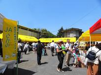 毎年恒例!藤沢本町の美味しすぎるイベント