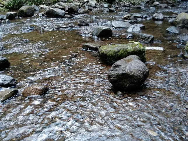 川遊びをしながらバーベキュー