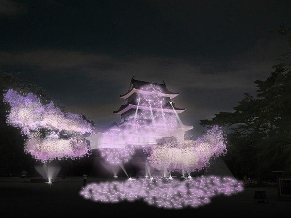 光と音が織りなす、冬桜イルミネーションの画像