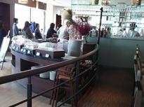 人気 レストラン「トライベックス」