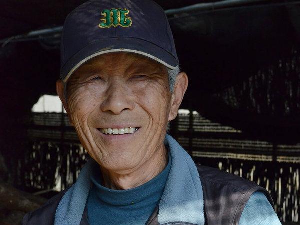 東京都農業祭でシイタケが3年連続入賞、森和幸さんの画像