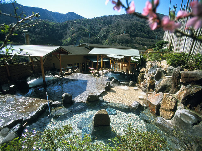 山を眺めながら天然温泉でリラックス