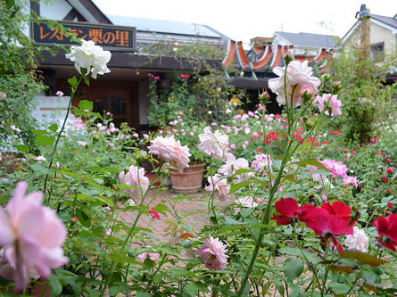 バラの中にあるレストラン