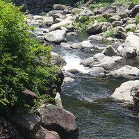 箱根湯本から登山鉄道に乗り換え、宮ノ下へ。自然を満喫散策路。