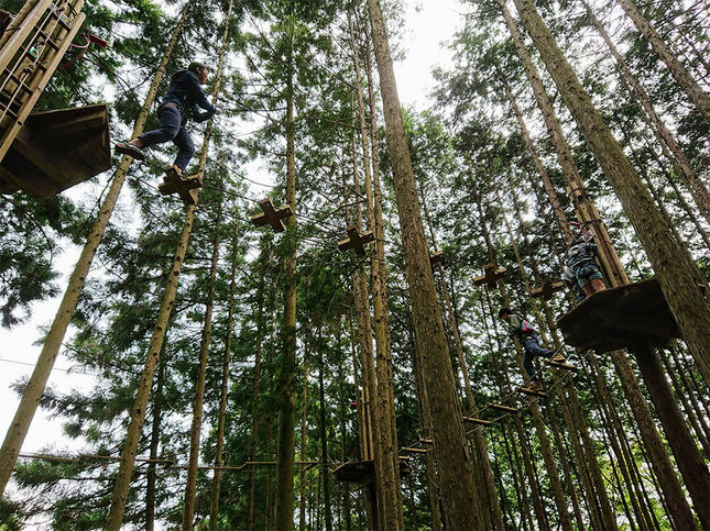 ターザン気分になって、森の中を飛び回ろう!