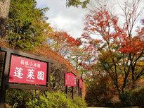 紅葉の絶景を堪能できる「箱根小涌園蓬莱園」