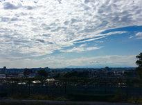 成城から丹沢の山々を一望