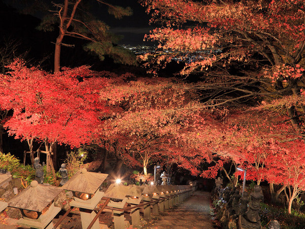 二つ星の夜景と紅葉ライトアップが同時に楽しめるの画像