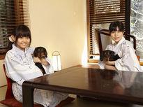 愛犬と一緒に過ごせる箱根の宿