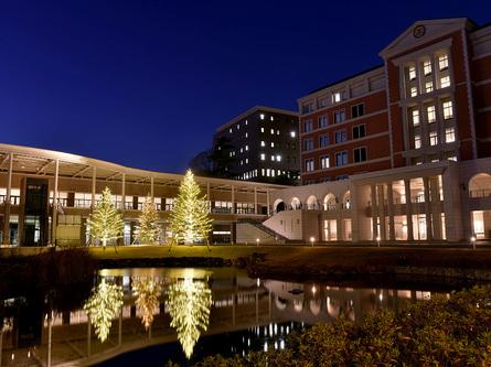 夜空に輝く、玉川学園のクリスマスツリー