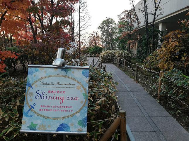 成城コルティ屋上庭園のイルミネーション