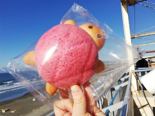 """""""ピンク色の甲羅を載せたカメのメロンパン"""""""