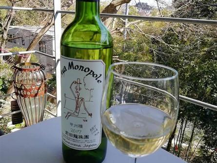自家栽培葡萄100%使用の白ワインを森の中の小さなお店で