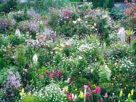 四季折々の花を育てる〝庭いじり師〟の南さん