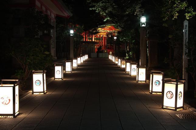 日本文化を感じる幻想的ライトアップ