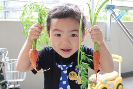 【親子食育イベント】プランターで野菜作り講座