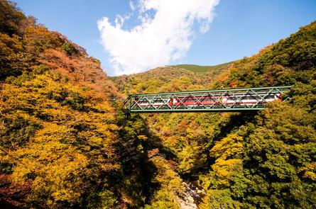 壮大な秋景色を登山電車から堪能しよう!