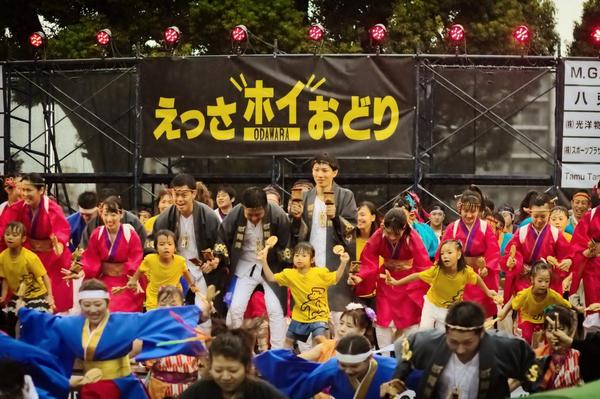見て踊って、小田原の「えっさホイおどり」を楽しもうの画像