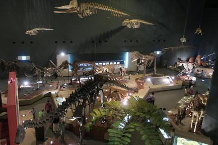 やっぱり迫力の恐竜化石!