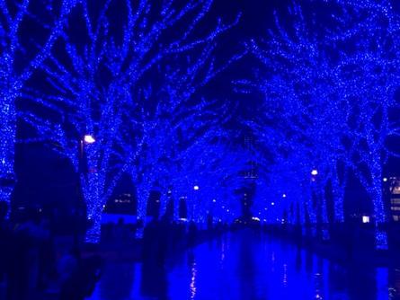 渋谷に『青の洞窟』が帰ってきた!