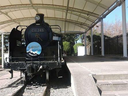 C11形蒸気機関車が展示されている公園
