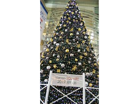 心も彩るクリスマスツリー