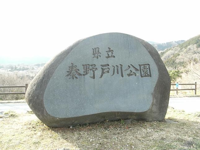 「三花」満開の県立戸川公園