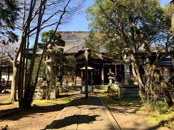 緑に囲まれている「泉龍寺」