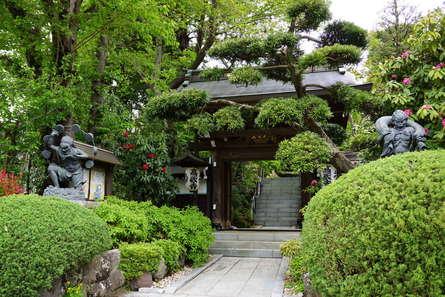 花と緑と水があふれるお寺