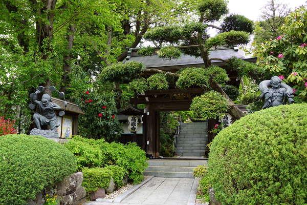 花と緑と水があふれるお寺の画像