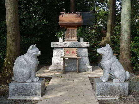 ペット愛好家必見!全国でも珍しいペットのお参りができる「座間神社」へ行こう
