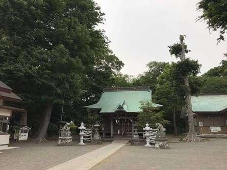 パンダが宮司!?神奈川最古の歴史を誇る「有鹿神社」