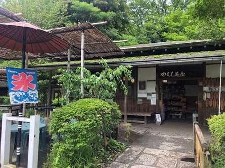 「日本の歴史公園100選」にも選出!町田市を代表する公園「薬師池公園」をご紹介