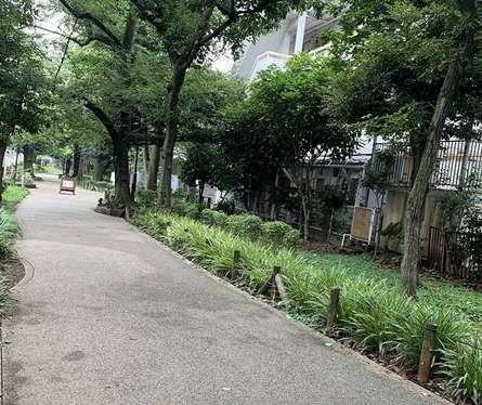 鳥山川緑道 経堂付近
