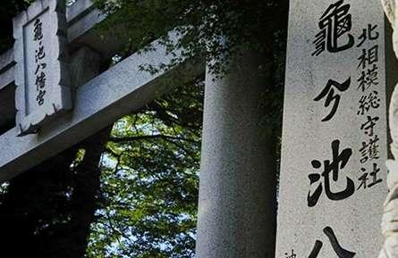休日は北相模の古社「亀ヶ池八幡宮」へ!歴史や行事をご紹介