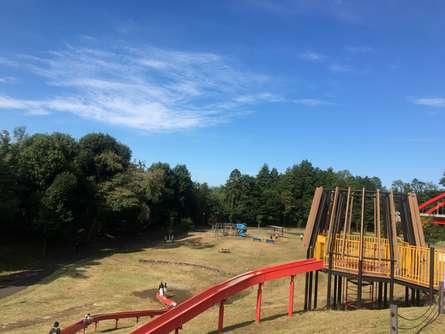大きなローラーコースターのある公園