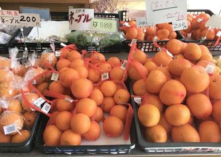新鮮な果物や野菜がいっぱい