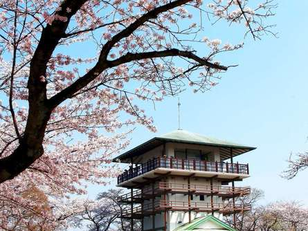 枡形山の展望台から桜と大パノラマを満喫しよう!