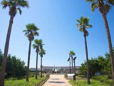 海に行くならスポーツも絶景も満喫できる「湘南海岸公園」がおすすめ!