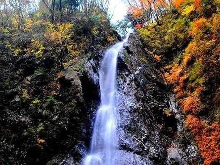 本棚の滝と森林浴で、心もカラダもリフレッシュ!