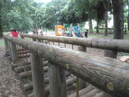 自然豊かでのんびりできる公園
