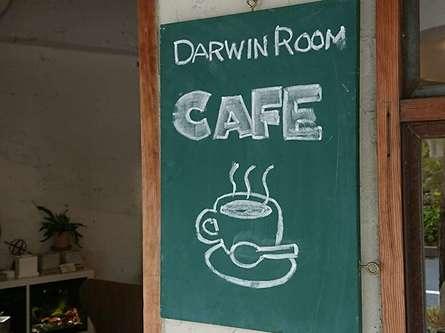 ダーウィンルームのカフェスペース♪