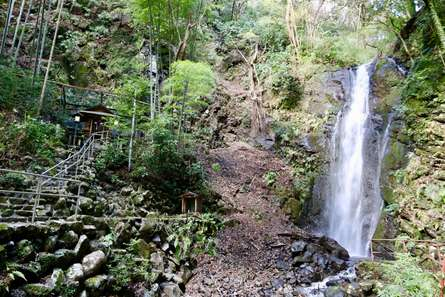 都会から離れてマイナスイオンを感じよう!山北町「洒水の滝」の魅力をお届け