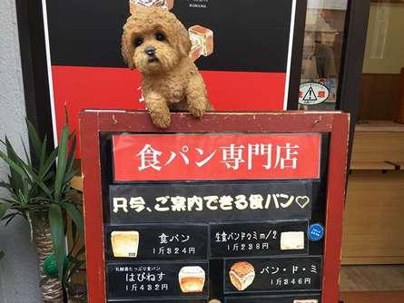 食パンの専門店