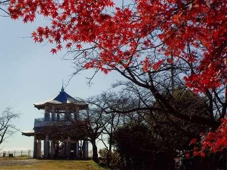 都心からのアクセス抜群!秦野「弘法山公園」で日帰りハイキングを楽しもう