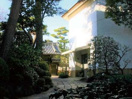 茶の歴史と文化に触れられる!世田谷・齋田記念館で文化的な休日を